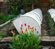 Продажа теплиц и парников для дачи и огорода с доставкой по всей Украи