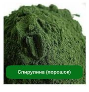 водоросль Спирулина оптом и розницу