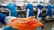 Рабочие на Производство Лосося