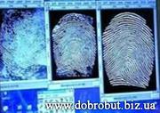 Отпечатки пальцев,  дактилоскопия,  дактилоскопическая экспертиза,